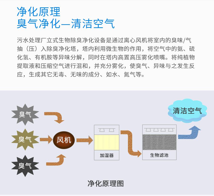 生物废气净化塔,微生物废气治理